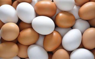 Яйца и яичные товары